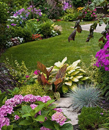 Green FX Landscaping Commercial Garden Design