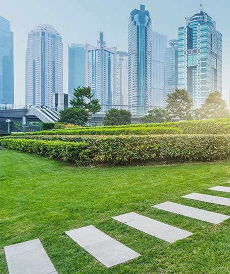 Contact Green FX Landscaping for Commercial Landscaping Services