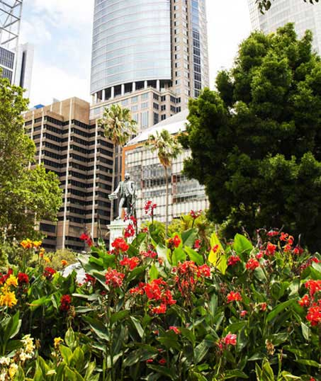 Green FX Landscaping Commercial Garden Design
