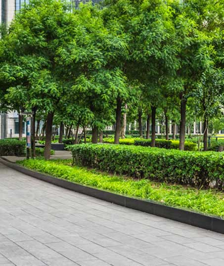 Green FX Landscaping Commercial Grounds Maintenance