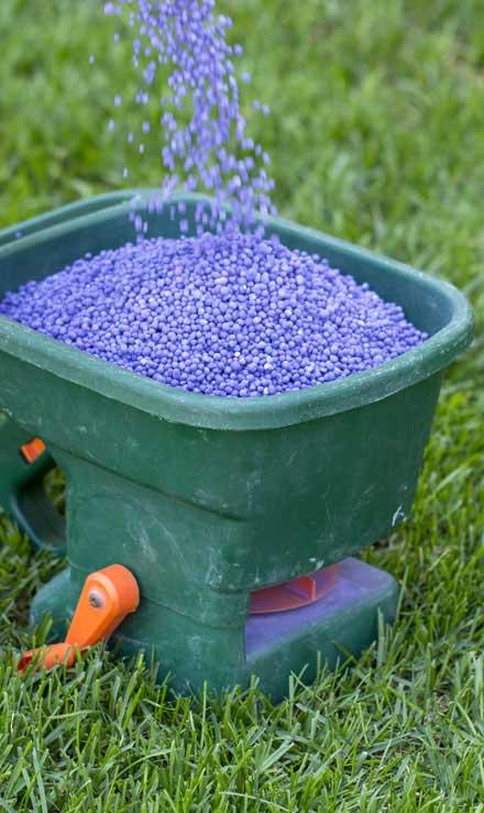 Green FX Landscaping Commercial Lawn Fertilization